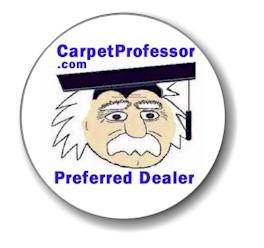 CarpetProfessor.com Logo